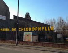 Jardin de Chlorophylle